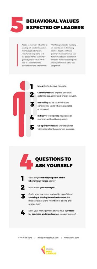 5 Behavioral Values we Expect from Leadership Infographic