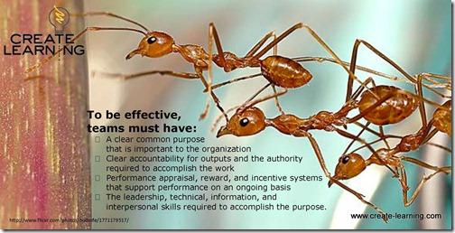 Team Work what effective teams must have team building expert michael cardus
