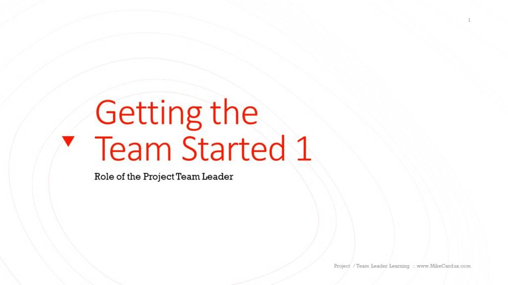 getting the team started - Role of project team leader
