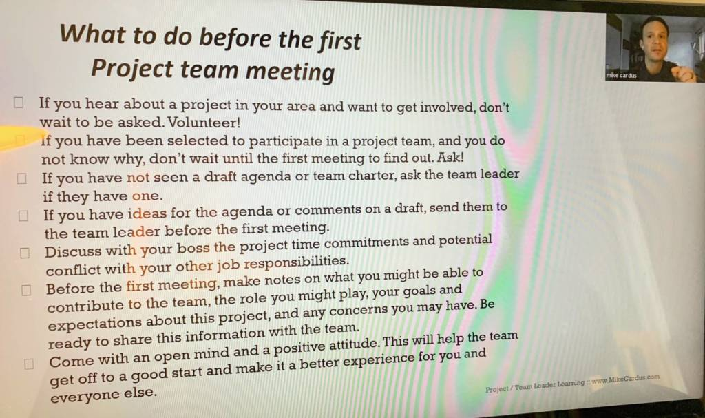 Role of the team member in project teams