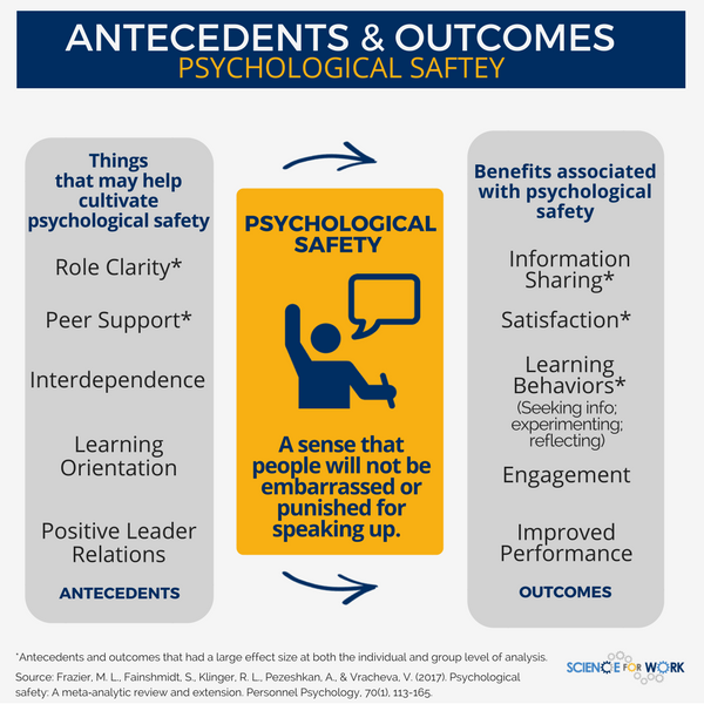 psychological safety inputs and outcomes from Science for Work